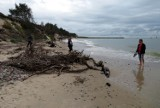 Rowy po sztormie. Skutki działań żywiołu na plaży i w jej pobliżu