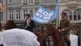 Bydgoska manifestacja w obronie państwowej hodowli koni arabskich [zdjęcia, wideo]