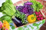 Informator Medyczny: Twoja energia i samopoczucie zależą od diety. Czy na pewno wiesz, jakie jedzenie da ci więcej sił i dobry nastrój?