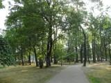 Park Staromiejski w Żorach: Jak dzisiaj wygląda?