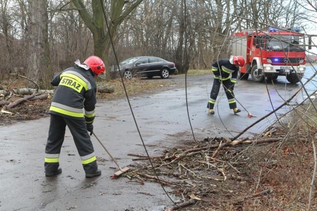 Strażacy przyznają, że najwięcej pracy mają przy usuwaniu złamanych konarów, jak również całych drzew powalonych przez wichurę.  Np. w niedzielę przed godziną 19 interweniowali w Jaworze w dwóch różnych miejscach, gdzie wiatr przewrócił drzewa na samochody. Jedna osoba została tam niegroźnie ranna.   CZYTAJ WIĘCEJ O SKUTKACH WICHURY, NAJNOWSZE INFORMACJE - ZOBACZ ZDJĘCIA - przejdź do kolejnych slajdów przy pomocy strzałek lub gestów na telefonie komórkowym