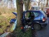 Trzemżal. Samochód uderzył w drzewo. Poszkodowane dziecko i jego matka