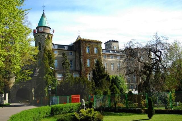 Zamek w Szczytnej