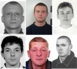 Poszukiwani przez policję z Nowego Sącza, Limanowej i Gorlic. Zobacz ich zdjęcia! [RAPORT SIERPIEŃ 2020]