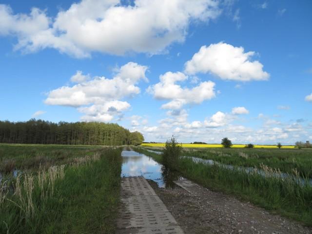W weekend zapowiada się słoneczna pogoda, choć nie będzie za ciepło. Można wykorzystać ten czas na bezpieczną wyprawę Bobrzym Szlakiem w okolice Orzechowa i Zapadłego.