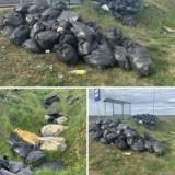 Śmieci Gniezno: zalegające worki z odpadami przy drodze do naszego miasta