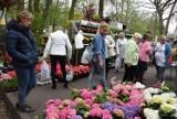 Wiosenne targi ogrodnicze w Opatówku zostały odwołane. ZDJĘCIA