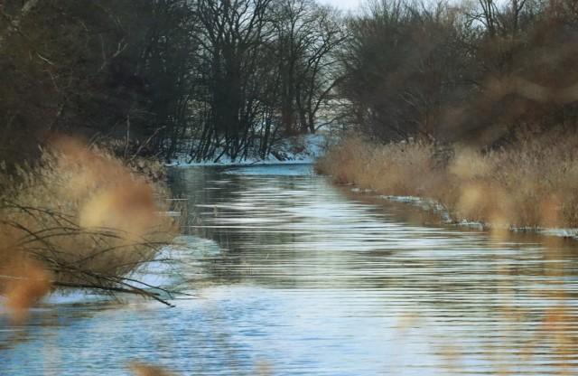 Warto wybrać się na spacer nad rzeką Noteć