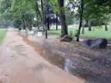Nawałnica nad Żarami. Park i rondo przy Alei Jana Pawła II w Żarach zostało zalane. Dzisiaj zapowiadają kolejne ulewy, jak to się skończy?