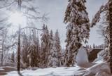 Prognoza pogody 22 stycznia. Siarczysty mróz wróci do Polski dopiero w lutym? Prognoza pogody na luty 22.01.2021
