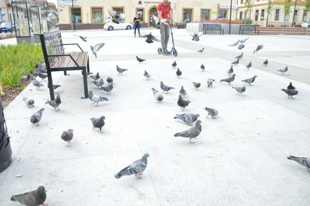 Rynek w Bochni po rewitalizacji
