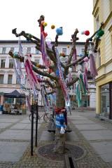 W Jeleniej Górze drzewa są kolorowe. Wspaniała akcja. Zobacz jak teraz wyglądają drzewa!