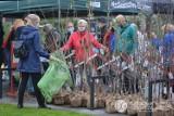 Święto Drzewa w Dąbrowie Górniczej. Każdy mógł wrócić do domu z sadzonką