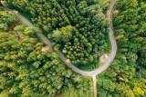 Najwyżej oceniane parki narodowe w Polsce. Popularny wśród Wielkopolan park zwycięzcą rankingu!
