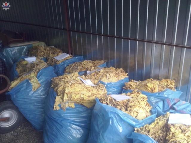 Powiat biłgorajski: policjanci zabezpieczyli 400 kilogramów tytoniu