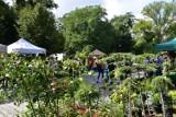 Ogrodnicy, szkółkarze, producenci Prawie jesienny kiermasz na Partnicach
