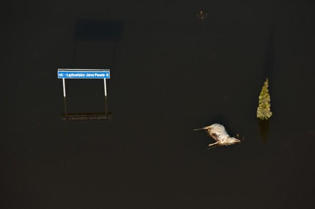 Grand Prix przyznano Kacprowi Kowalskiemu za zdjęcie Powódź z nieba - Sandomierz 2010