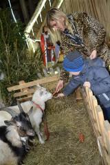 Żywa szopka bożonarodzeniowa? W Mirachowie to już tradycja!