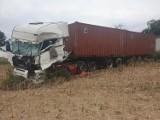 We Włókach pod Bydgoszczą zderzyły się dwie ciężarówki. DK 5 jest zablokowana [zdjęcia]