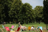Darmowe wydarzenia na ostatni weekend wakacji. Sprawdź, co robić w Krakowie