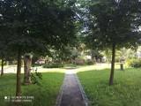 Magiczny ogród w Wałbrzychu. Piękny zakątek, do którego może zajrzeć każdy. Z cyklu odkrywamy Wałbrzych