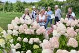 Trwa Aktywny Weekend w Ogrodzie Botanicznym w Kielcach. W sobotę 28 sierpnia było wiele dzieci i seniorów [ZDJĘCIA]