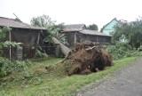 Nowa Jastrząbka k. Tarnowa po apokalipsie. Mnóstwo powalonych drzew, zerwane dachy, zniszczone uprawy [ZDJĘCIA]