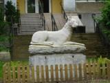 Atrakcje Szczawna - Zdroju. Palmy, pomnik psa - to trzeba zobaczyć w Parku Zdrojowym, co jeszcze?