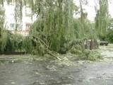 Trąba powietrzna przeszła nad Legnicą