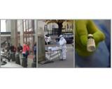 Rok pandemii koronawirusa w Gnieźnie na zdjęciach. Zamknięte sklepy, puste ulice i początek szczepień [FOTO]