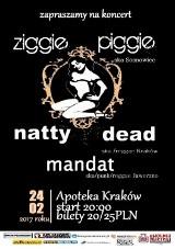 Ziggie Piggie & Natty Dead & Mandat  24.02.17  Kraków Apoteka