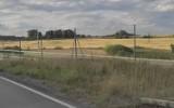 Kręgi w zbożu w Szczecinku. Czytelnik je zauważył [zdjęcia]