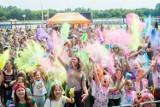 Co robić w weekend? Festiwal Kolorów, Wystawa Kotów i inne atrakcje