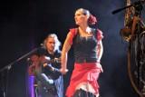 Karnawał w Teatrze Miejskim w stylu flamenco & rock [zdjęcia]