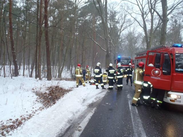 Auto wypadło z drogi i uderzyło w drzewo. Jedna osoba została ranna (17.02.2021).