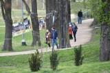 Odpoczynek w Żarach. Skorzystajcie ze słonecznej pogody i pospacerujcie po żarskim parku