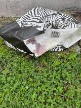 Makabra w Rybniku. Na śmietniku, w torbie, znaleziono martwego psa DRASTYCZNE ZDJĘCIA