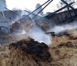 Pożar w gminie Skierbieszów. Spalone pomieszczenia gospodarcze ze zbożem