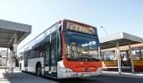 Od 1 września nowa linia MPK Rzeszów. Jedzie na trasie Bł. Karoliny do Staroniwskiej. To początek większych zmian?