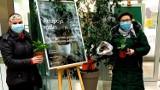 Adopcja roślin w Miejskiej  Bibliotece Publicznej w Chrzanowie. Przynieś, wymień, podziel się lub oddaj kwiatka