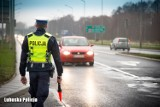 Nie tylko prędkość albo jazda bez pasów. Te nietypowe przewinienia mogą uszczuplić portfele pieszych i kierowców