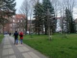 Obelisk ku czci ofiar zbrodni katyńskiej w centrum Kołobrzegu? Ruszają konsultacje