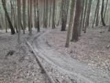 Motocrossy i quady rozjeżdżają las w chęcińsko-kieleckim parku krajobrazowym. Mieszkańcy kieleckiego Zalesia mają dość (DUŻO ZDJĘĆ)