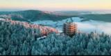 Dzień Dobry TVN. Wieża widokowa w Krynicy-Zdroju na antenie stacji telewizyjnej. Transmitują pogodę ze ścieżki w koronach drzew [ZDJĘCIA]