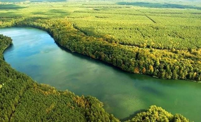 Rzeka Rurzyca: Zdjęcia jednej z najpiękniejszych rzek w Polsce [GALERIA] |  Szczecin Nasze Miasto