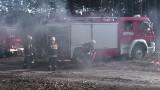 Pleszewscy strażacy walczyli z groźnym pożarem.