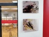 Wystawa fotograficzna Marcina Kwarty w Miejskiej Bibliotece Publicznej w Radomsku