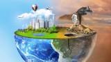 Sprawdzian z ekologii napisałbyś na 6? Sprawdź swoją wiedzę ekologiczną!