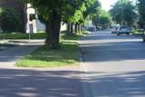 Co z trawnikami w Nowym Dworze Gdańskim? Mieszkańcy zwracają uwagę, gmina odpowiada