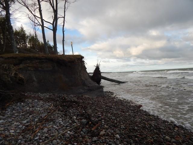Wietrzna pogoda i wzburzone morze niszczy klify w Orzechowie
